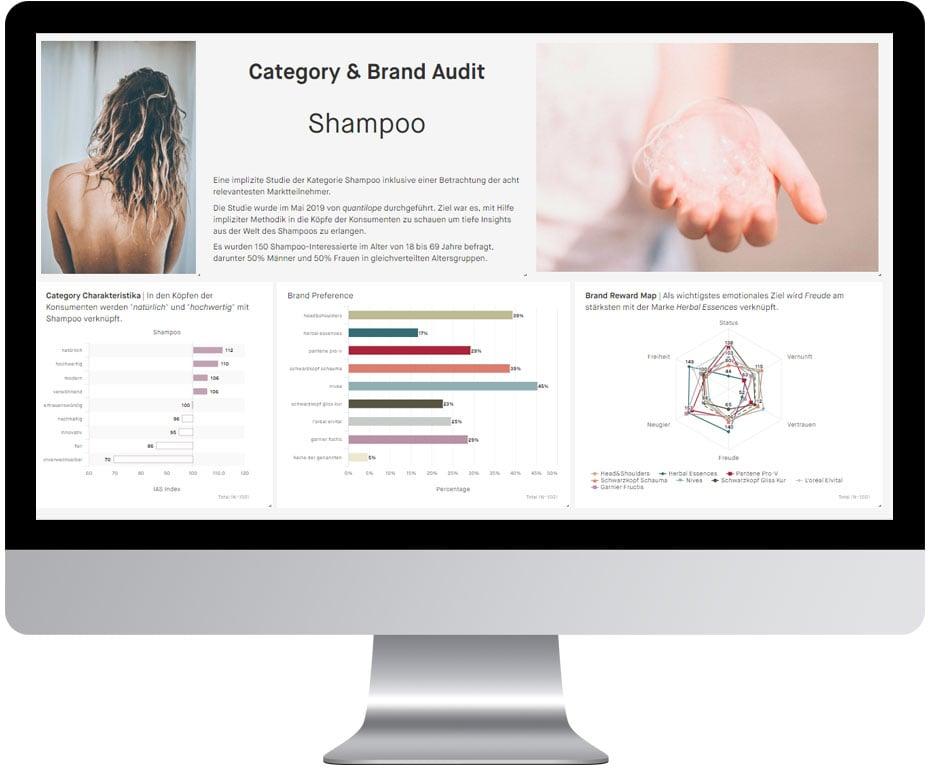 Shampoo+Bildschirm